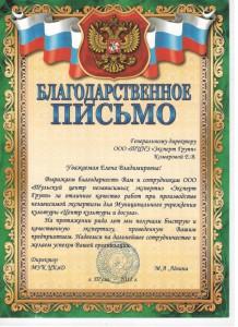 Отзыв директора МУК ЦКиД М.А.Лёвиной