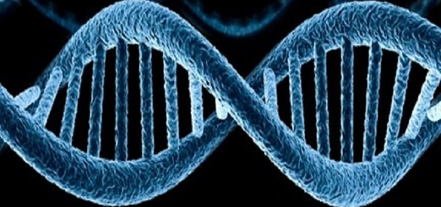Генетическая экспертиза в Туле